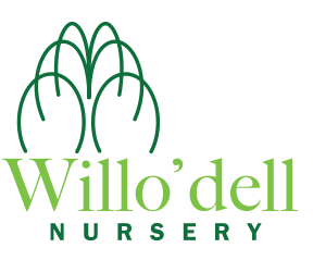 Willo'dell Nursery